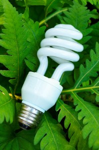 New lightbulb recycling scheme launched in Lewisham