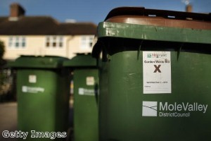 Redbridge residents urged to book green garden waste collections
