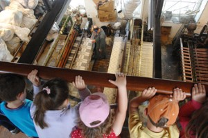Lewisham museum wins family-friendly accolade